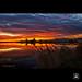 Apocalipsi quotidià - Apocalypse everyday by Pep Iglesias