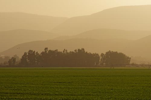 sunset green bird water fog day sony minolta75300mm mygearandme mygearandmepremium mygearandmebronze sonya55
