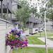 Wed, 08/29/2012 - 13:57 - _DSC2805