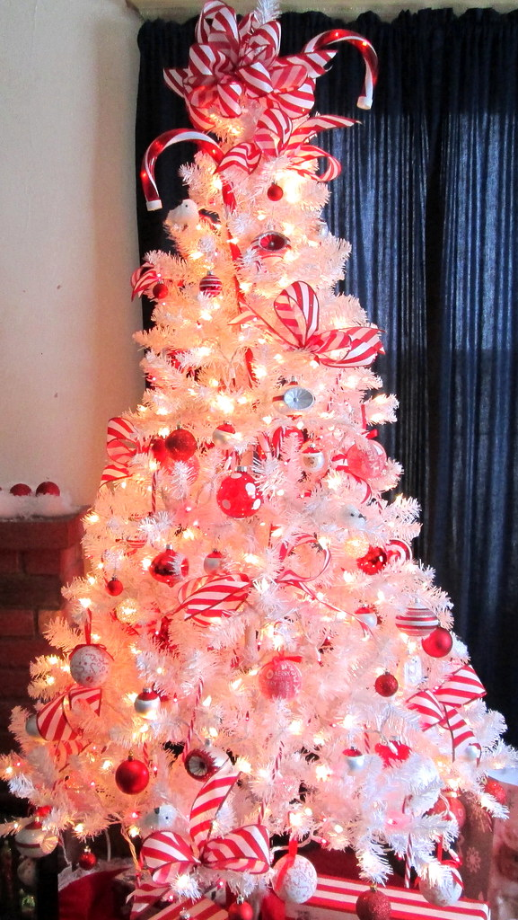 Candy Cane Christmas Tree.Candy Cane Themed Christmas Tree Back In November When