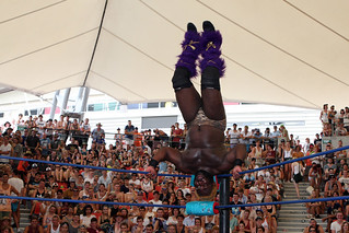 Lucha vaVoom, Big Day Out | by Eva Rinaldi Celebrity and Live Music Photographer