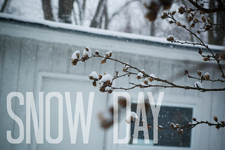 snow day | by Jodimichelle