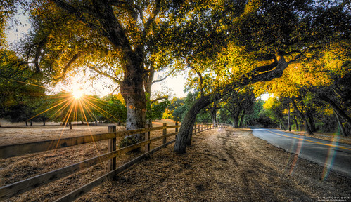 california road trees sunset field northerncalifornia fence landscape rainbow bend fav50 fav20 lensflare sunburst fav30 woodside hdr gettyimages portolavalley goldenlight naturescape fav10 fav100 fav40 5000v fav60 fav90 fav80 fav70