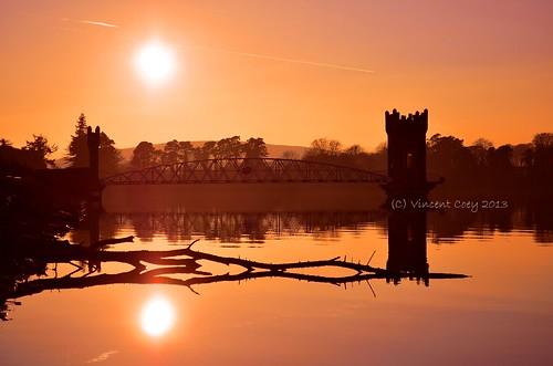 county bridge ireland sunset sun tree water reflections dead nikon reservoir wicklow roundwood vartry d5100 mygearandme mygearandmepremium mygearandmebronze mygearandmesilver mygearandmegold vigilantphotographersunite