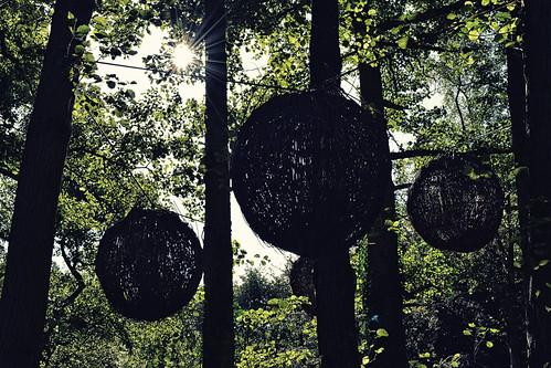 Tree Spheres (25/09/2016)
