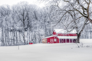 Red Barn on Winter White   by Painted Light Studio