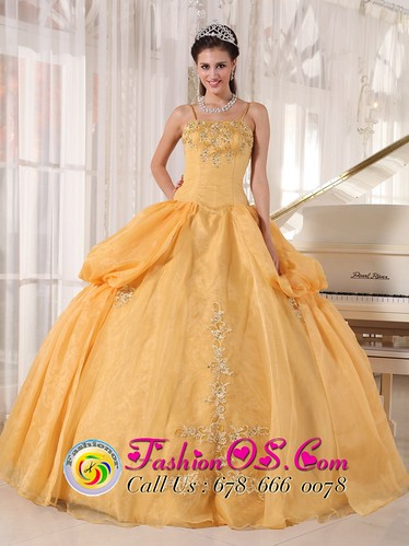 yellow quinceanera dresses with corset back  pageant