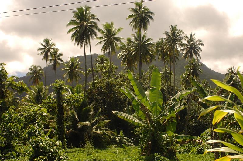 Marquesa  Islands, Polynesie Francais