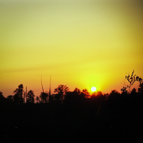 sunset 120 film landscape florida bronica ocala velvia50 bronicaetr greatnature hopkinsprairie ryanmckee