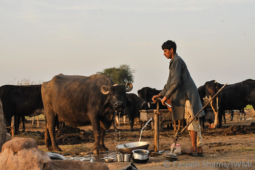 Improved water management enhances food security and econcomic development in Pakistan