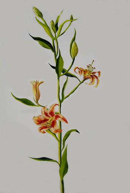 ציור פרחים ציורי פרח רפי פרץ צייר ישראלי אמנות ישראלית עכשווית   אמן עכשווי מודרני ישראלי אומנות מודרנית לצייר זר הפרחים לצביעה לציור פרחי