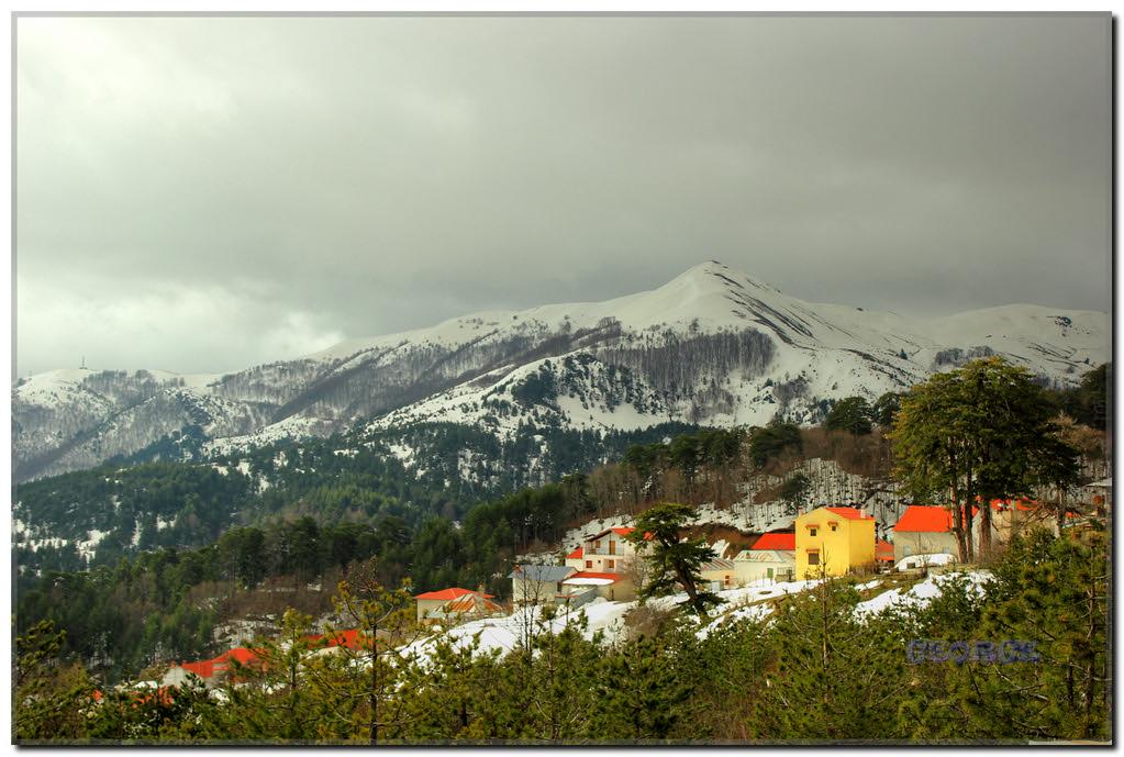 Vasilitsa Smixi Snowy mountains Grevena Makedonia Greece George @ papaki 01