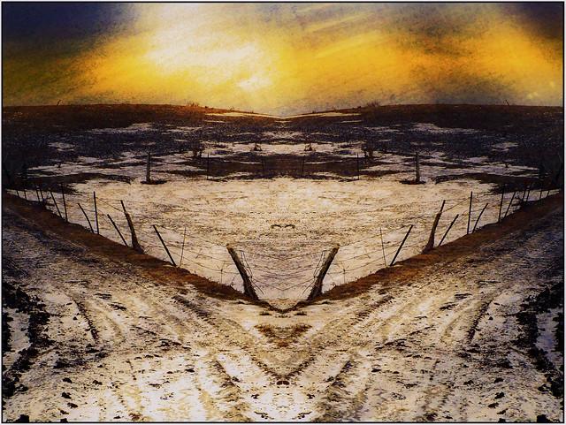 Pasture Land, Winter