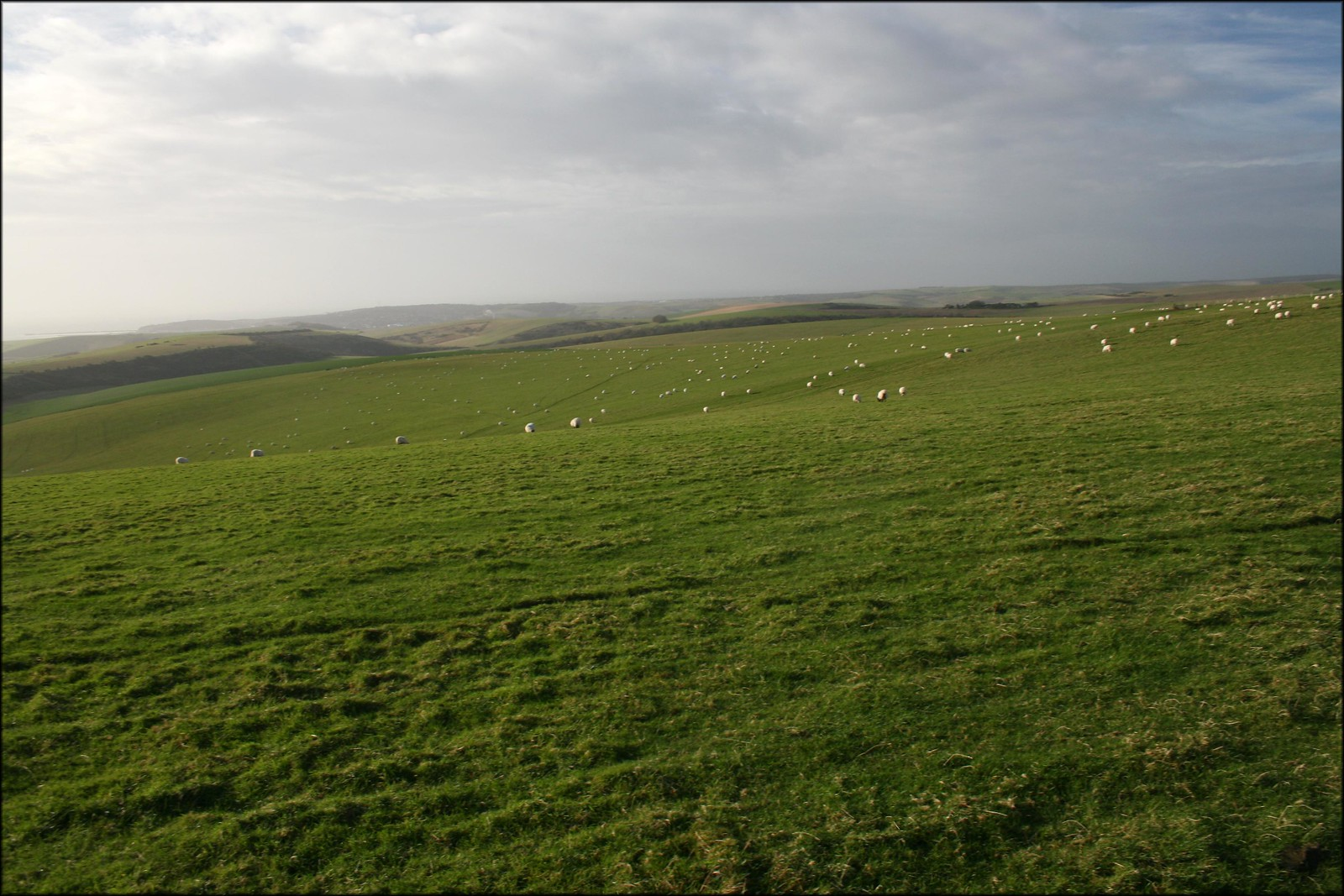 The South Downs near Alfriston