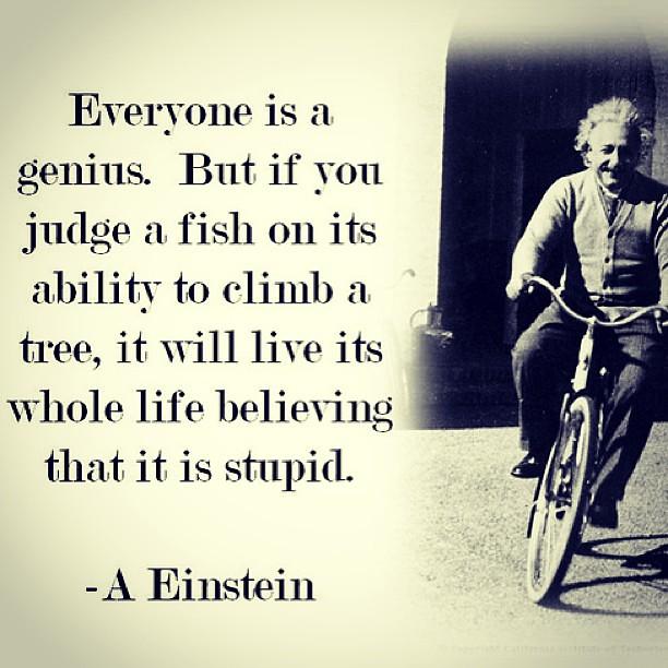 Day 7 Quote Day7 Quote Alberteinstein Einstein Fish Flickr