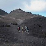 Guatemala, Volca?n Pacaya Cumbre  04