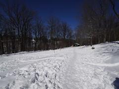 日, 2013-02-10 12:25 - Sleepy HollowのDouglas Park