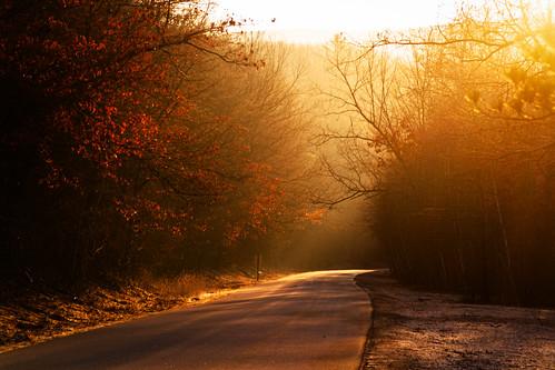 morning sunrise pennsylvania trail lehighgorgestatepark