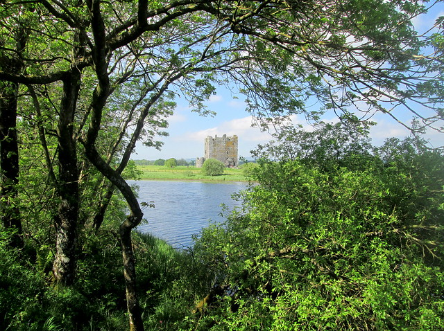 Threave Castle from Osprey viewing area