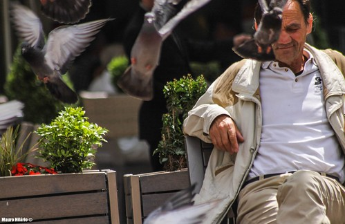 Pigeon Man | by Mauro Hilário