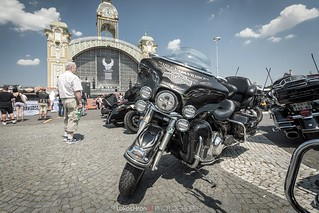 Harley-Davidson 115th Anniversary | by Lukas Hron Photography