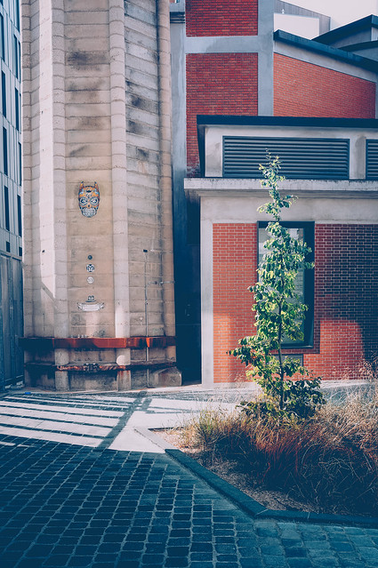 Noty art tree