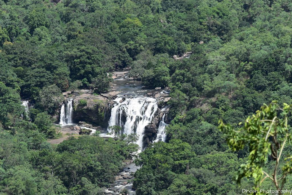 Breath Taking View of Thoovanam Falls, Chinnar Wildlife Sa