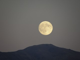 Moon 9150267 | by Mr Larrington
