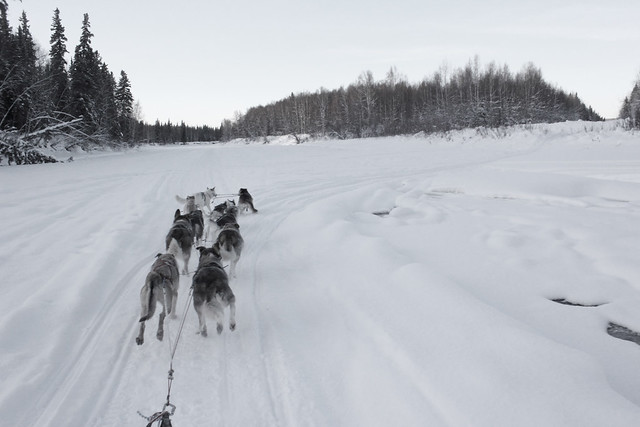Trail Lesson