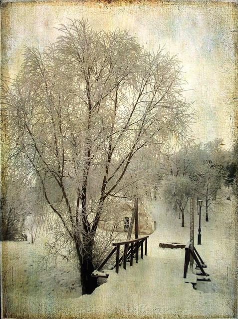 Téli varázslat /Winter magic/