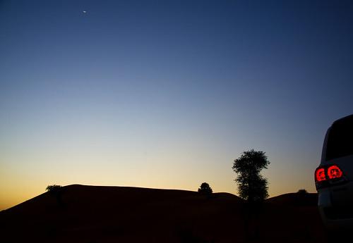 life silhouette night sunrise canon landscape photography nikon dubai desert photos photographers nights photog d800 llife nphoto nphotos iphonegraphy flickrtravelaward walidphotography