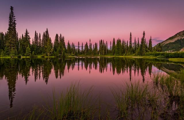 Alpine glow reflections, Rainier NP