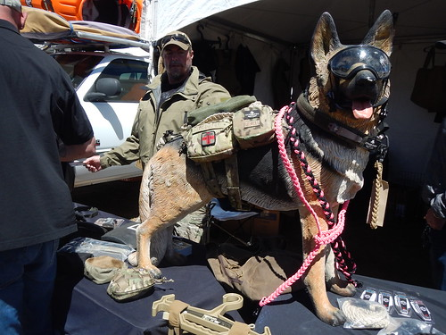 K9 GSD Service Dog
