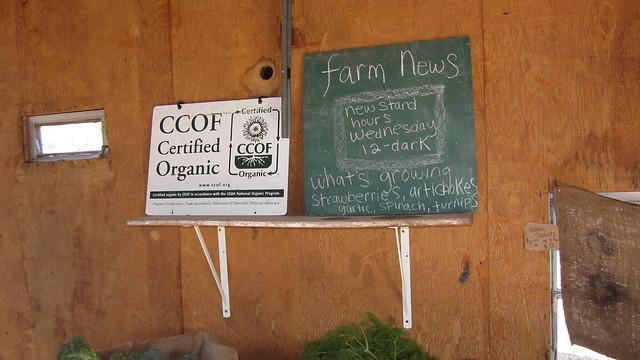 IMG_7126 Goleta Ellwood organic farm stand Langlo Ranch road