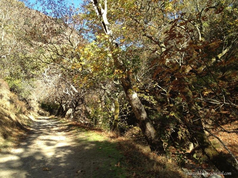 San Jose_Alum Rock Park (25)
