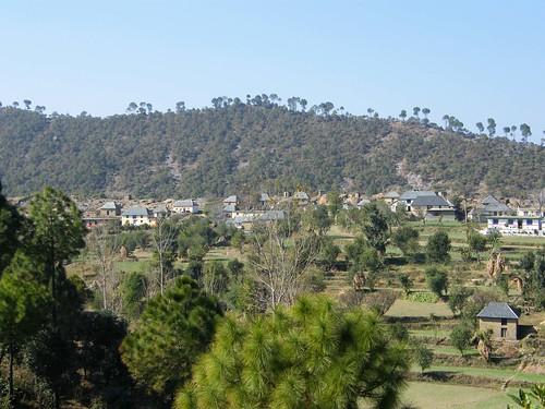 houses india village fields himachalpradesh rewalsar theindiatree