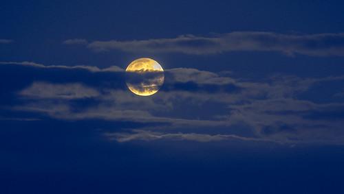 Harvest moon I   by billplumtree