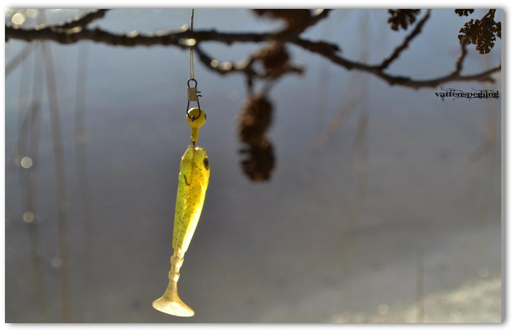 fiskedrag upphittat