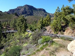 Gran Canaria - Santa Lucia de Tirajana's Surroundings   by elsua