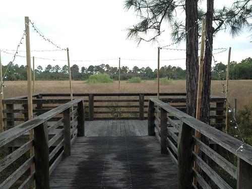 The marsh overlook   by Erin *~*~*