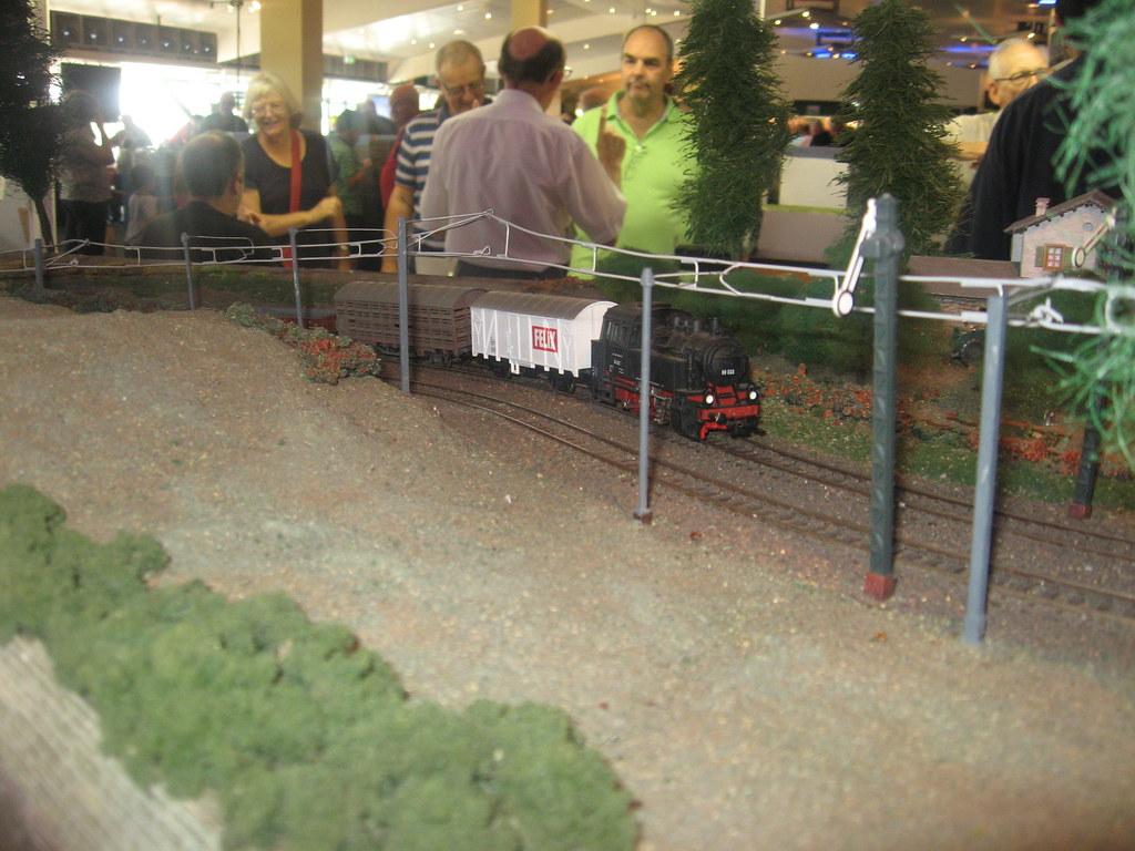 Tierbahn 1 by Coolibah Rail