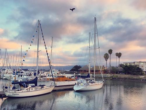 morning shotwithiphone6s mobilephotography eastbay marina harbor sailboats delphinus sunrise pixelmama california emorycoveyachtharbor emeryville iphone6s