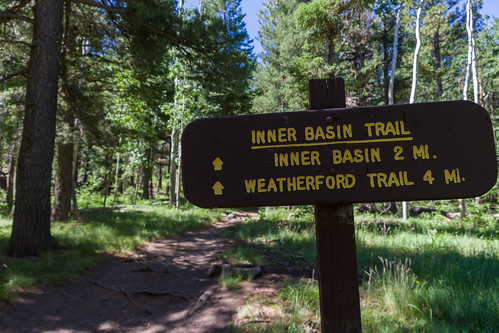 Coconino National Forest - Inner Basin Trail No  29