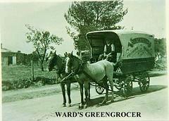 Ward A.M. greengrocer