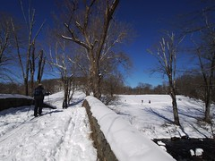 日, 2013-02-10 13:12 - Rockfeller Park Preserve