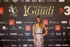 V Premis Gaudí