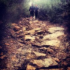 Course Nature et Vins 2013, parcours de reconnaissance : sur les grès