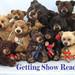 Bears 2013