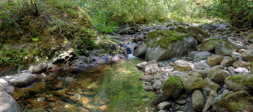 ladysmith britishcolumbia canada stream creek rocks panorama landscape hiking