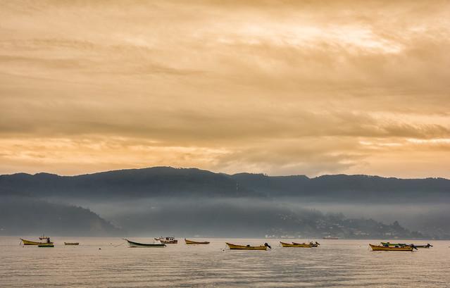 Desfile de botes